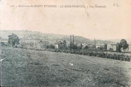 42 Environs De Saint-Etienne - Le Bois Montzil - Vue Générale VILLARS - Andere Gemeenten