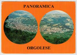 PANORAMICA  ORGOLESE     ORGOSOLOVISTO  DALLA  VEDETTA             (VIAGGIATA) - Italia