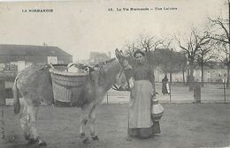 NORMANDIE - Vie Normande - Une Laitière - Métier Paysanne - Unclassified