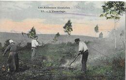Les Ardennes Illustrées - L'Essartage - Cultures