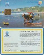 427/ Indonesia; Parangtrilis, Special IRIS Chip - Indonesien