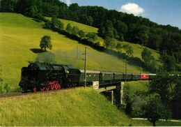 Train Steam Locomotive OGEG Lizenzlok 142-063 - Treinen