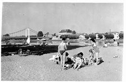 6087 - 58 - NIEVRE - COSNE SUR LOIRE - La Loire - Les Bains - Plage - Cosne Cours Sur Loire