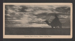 Egypt - RARE - Vintage Post Card - Sunset In The Desert - Briefe U. Dokumente