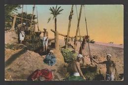 Egypt - RARE - Vintage Post Card - Shadufs - Briefe U. Dokumente