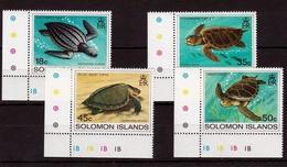 Turtles 1983 UMM - Solomon Islands (1978-...)