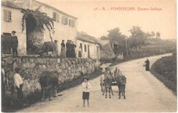 POSTAL  -PONTEVEDRA  -GALICIA  - ESCENA GALLEGA - Pontevedra