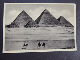 CARD VINTAGE  No-31 CAIRO. MEMORIALS OF 4000 YEARS AGO, THE PYRAMIDS OF GIZEH - Luoghi