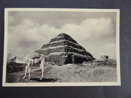 CARD VINTAGE  No-36 CAIRO. THE STEPPYRAMID AT SAKKARA - Luoghi