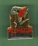 PECHAZUR *** I.C.A. *** 035 - Pin's