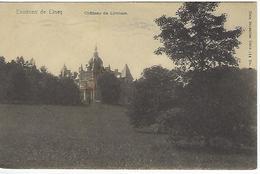 FRANCE - Ciney - Environs De Ciney - Château De Lincioux - 1916 - Ciney