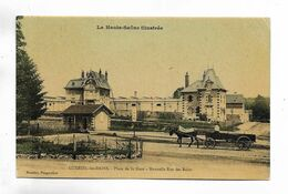 70 - LUXEUIL-les-BAINS - Place De La Gare. Nouvelle Rue Des Bains. Attelage. Carte Glacée - Luxeuil Les Bains