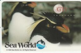 USA - Sea World (Orlando, Florida): Penguins - United States