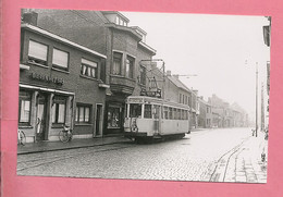Foto Putte  Grens  =  TRAM  LIJN  79 - Reproductions