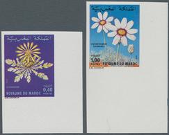 Thematik: Flora, Botanik / Flora, Botany, Bloom: 1979, MOROCCO: Flowers Set Of Two 0.40dh. 'Centaure - Other