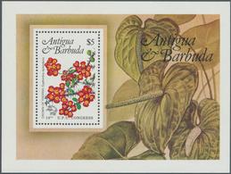 Thematik: Flora, Botanik / Flora, Botany, Bloom: 1984, ANTIGUA & BARBUDA: United Postal Union (UPU) - Other