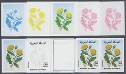 Thematik: Flora, Botanik / Flora, Botany, Bloom: 1986, Morocco. Progressive Proofs (8 Phases) For Th - Other