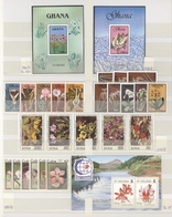 Thematik: Flora, Botanik / Flora, Botany, Bloom: 1990/2000 (ca.), Flowers, Comprehensive MNH Accumul - Other