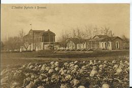 TURQUIE - L'institut Agricole à BROUSSE - Türkei