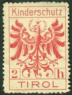 "Italia Südtirol Alto Adige ~ 1910 "" Innsbruck Kinderschutz "" Vignette Cinderella Reklamemarke - Erinnofilia"