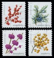 Etats-Unis / United States (Scott No.5415-18 - Winter Berries) (o) P3 - Usados