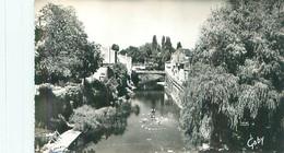 Carte  - Fontenay Le Comte - La Rivière , La Vendée Et Le Pont Des Sardines     S756 - Fontenay Le Comte