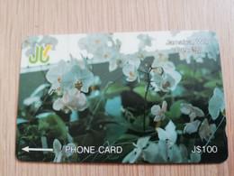 JAMAICA  J$100-  GPT CARD   DECEMBER 92 ORCHIDS CONTROL NR: 13JAMC   Fine Used Card  **3233** - Giamaica