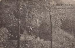 Grotte De Ramioul -   Les Environs Immédiats ( Engis , Flèmalle ) Les Chercheurs De La Wallonie - Engis