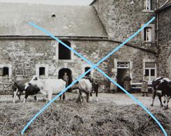 VINCON Senenne Bocq Spontin Reuleau Braibant Vieille Ferme 1934 1 Photo - Luoghi