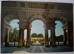 Mantova - Palazzo Te - Giardino Ed Esedra - Formato Grande Non Viaggiata – E 17 - Mantova