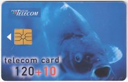 PORTUGAL B-089 Chip Telecom - Animal, Fish - Used - Portugal