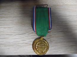 Médaille Oeuvre Humanitaire Société Des Bienfaiteurs De L'humanité De La France Algérie Tunisie Maroc - Médailles & Décorations