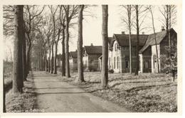 Balkbrug Boschlaan 5200 - Otros
