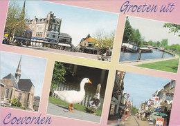 Coevorden Kerk Schip Gans Markt 5655 - Coevorden