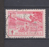 COB 838 Oblitération Centrale - Used Stamps