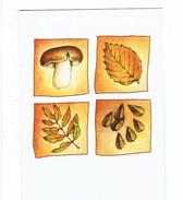 Double Cpm Fantaisie - Thème Automne Feuille Champignon Cèpe - - Mushrooms