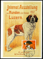 FP2149 Switzerland 1983 Pet Dog Extreme Film - Stamps