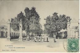 ESPAGNE - ALICANTE - PASEO DE CAMPOAMOR - 1905 - Alicante