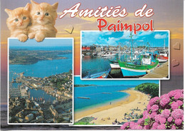 CHATS - 2 PETITS CHATONS - AMITIÉS DE PAIMPOL - 3 PETITES VUES - CPM - VIERGE - - Chats
