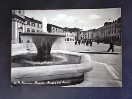 MARCHE -MACERATA - SAN SEVERINO MARCHE - F.G. LOTTO N°747 - Macerata