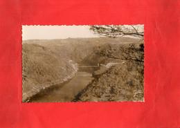 G1709 - NEUVIC D'USSEL - D19 - La Vallée De La Dordogne Et Le Pont De Saint Projet - Sonstige Gemeinden