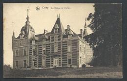 +++ CPA - CINEY - Château De LINCIAUX - Nels  // - Ciney