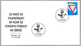FLUORIZACION DEL AGUA POTABLE - Fluoridation Of Drinking Water. Brasilia DF 2003 - Chemistry