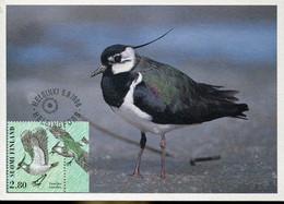 58604 Finland, Maximum 1996  Vogel Oiseau Bird  Vanellus Vanellus - Finland