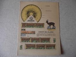 Protège Cahier, Le JARDIN  Des PLANTES, Fin XIX - Book Covers