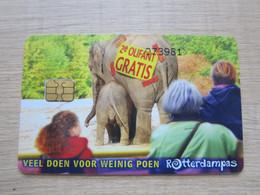 Rotterdampas 2004, Chip Card, Personal Card, Elephants - Non Classés