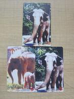 Shanghai Metor Tourist Souvenir Ticket Card, Elephants, Set Of 2,with A Paper Pack - Non Classés
