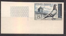 Superbe Coin De Feuille Colombophilie YT 1091 De 1957 Sans Trace Charnière - No Dentado
