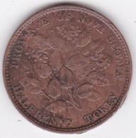 Province Of Nova Scotia - Nouvelle Ecosse, Halfpenny Token 1856 Victoria, KM# 5 - Canada