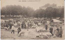 35 Rennes Marché Aux Porcs Superbe -s38 - Rennes
